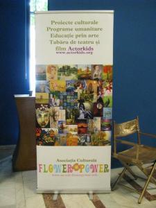 5 Asociatia Culturala Flower Power - Social Accounting